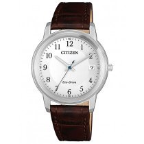 Citizen FE6011-14A Eco-Drive Ladies 33mm 5ATM